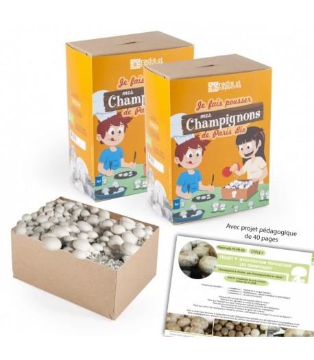 mini kit de culture champignons de paris bio par 2. Black Bedroom Furniture Sets. Home Design Ideas