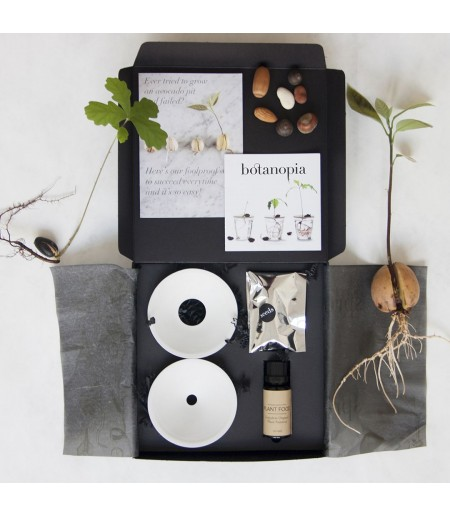 COFFRET GERMINATION BOTANOPIA