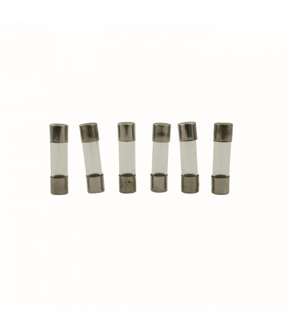 LOT DE 10 FUSIBLES TEMPORISES Ø5X20MM
